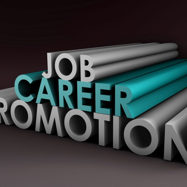 Job Career Promotion in Pyramid Shape